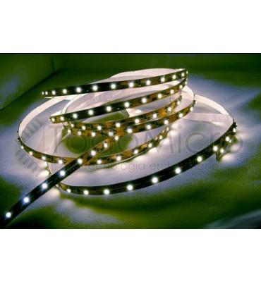 Tira de LEDs 2835 de 120 led por metro