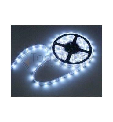 Tira de LEDs 5050 de 60 led por metro 24V