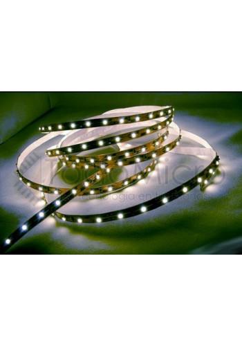 Tira de LEDs 3528 de 120 led por metro
